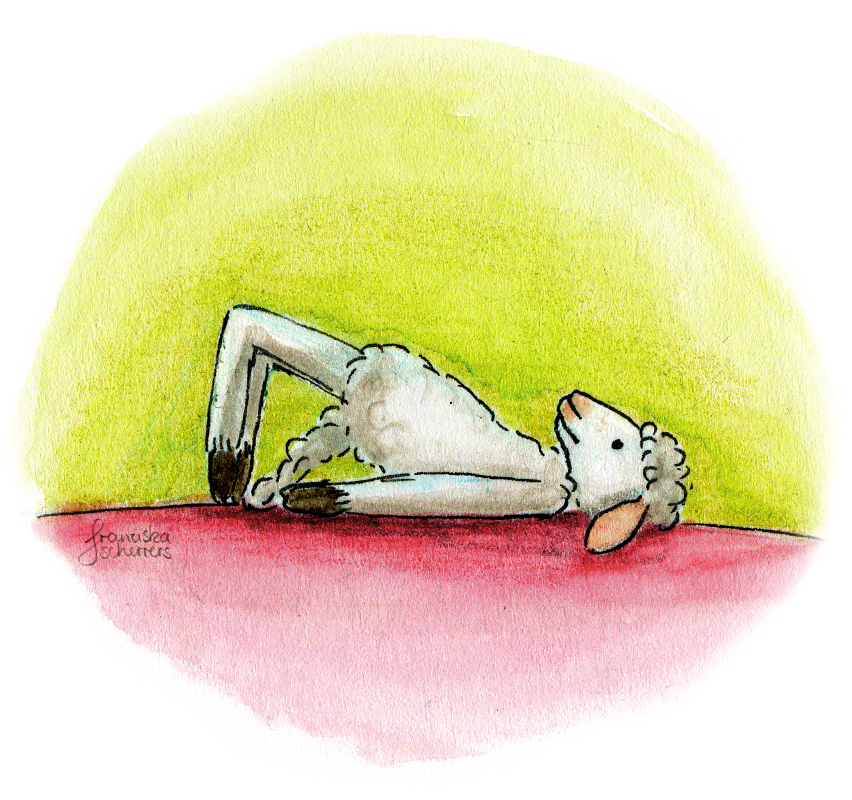 Yogaschaf Schafillustration Aquarell Illustration Beckenbodentraining