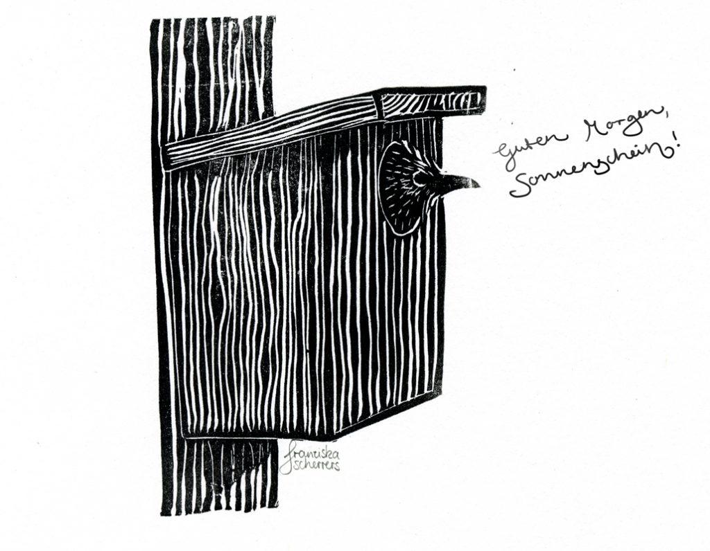 Linoldruck Illustration Star guckt aus Starenkasten Schwarzweiß